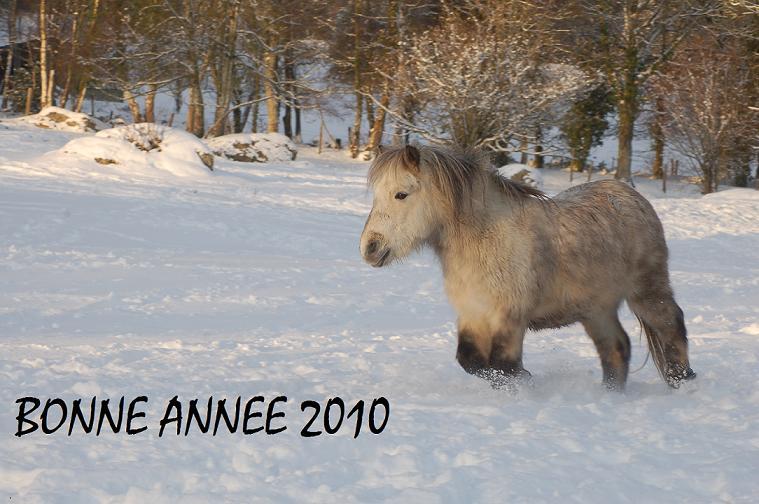 voeux-20104.jpg